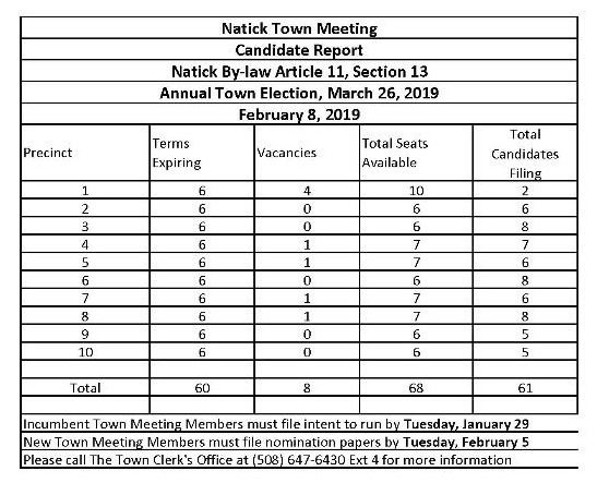 town meeting candidate reports 2019  final